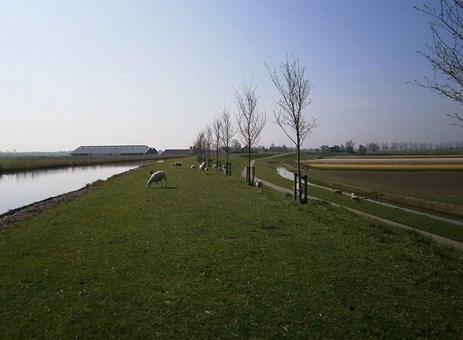 VVD Koggenland tegen grootschalig zonnepark Oudendijk