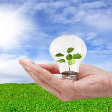 VVD Koggenland wil eigen energiebedrijf